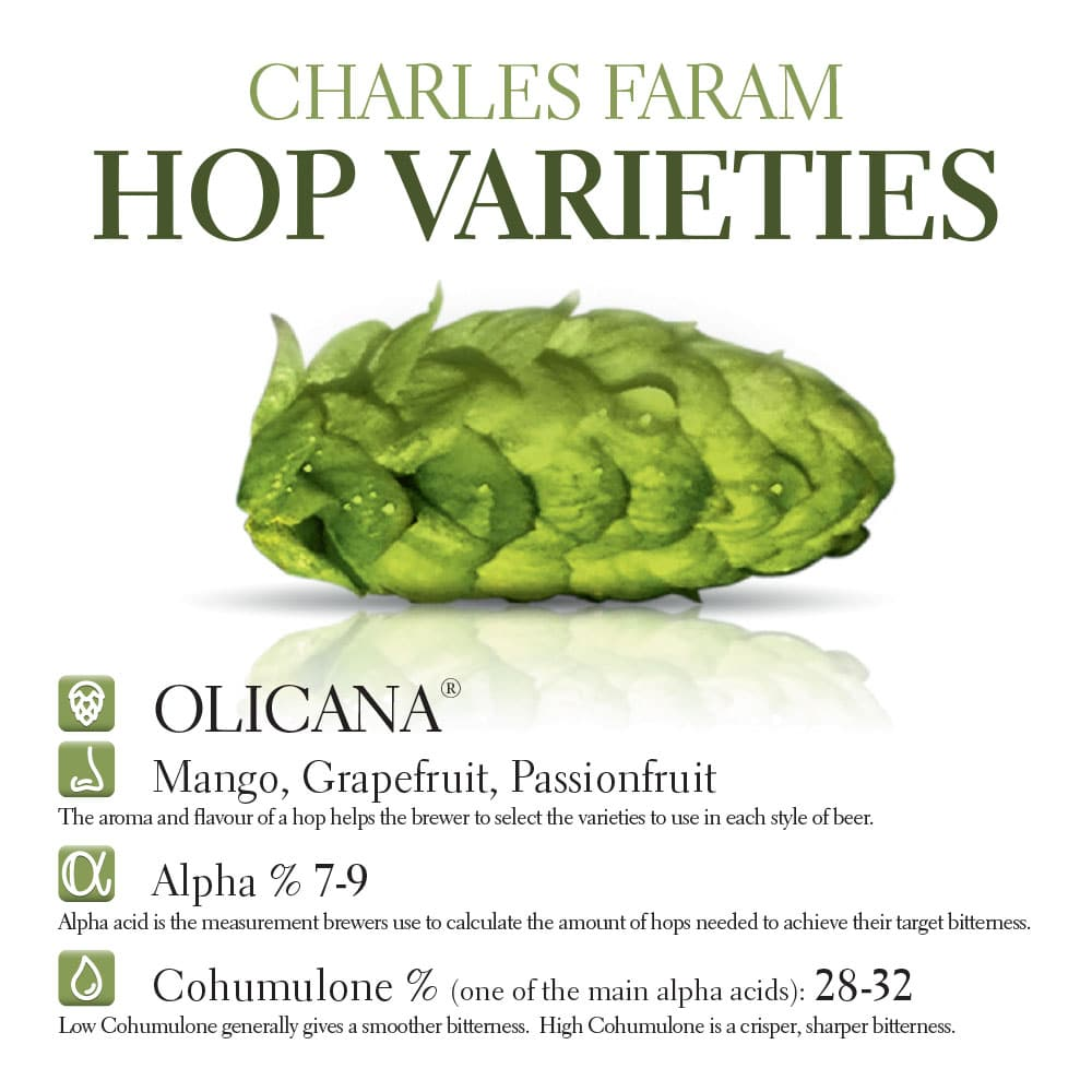 This photo contains the characteristics of the Olicana hop variety