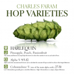 This photo shows the characteristics for Charles Faram's own Harlequin hop