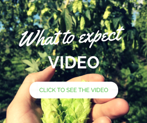 Button called 'What to expect'. Click this to go through to the about the HopWalk video